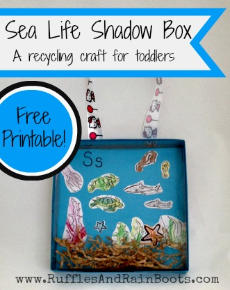 Sea Life Shadow Box — Oh, And Now A Door Hanging