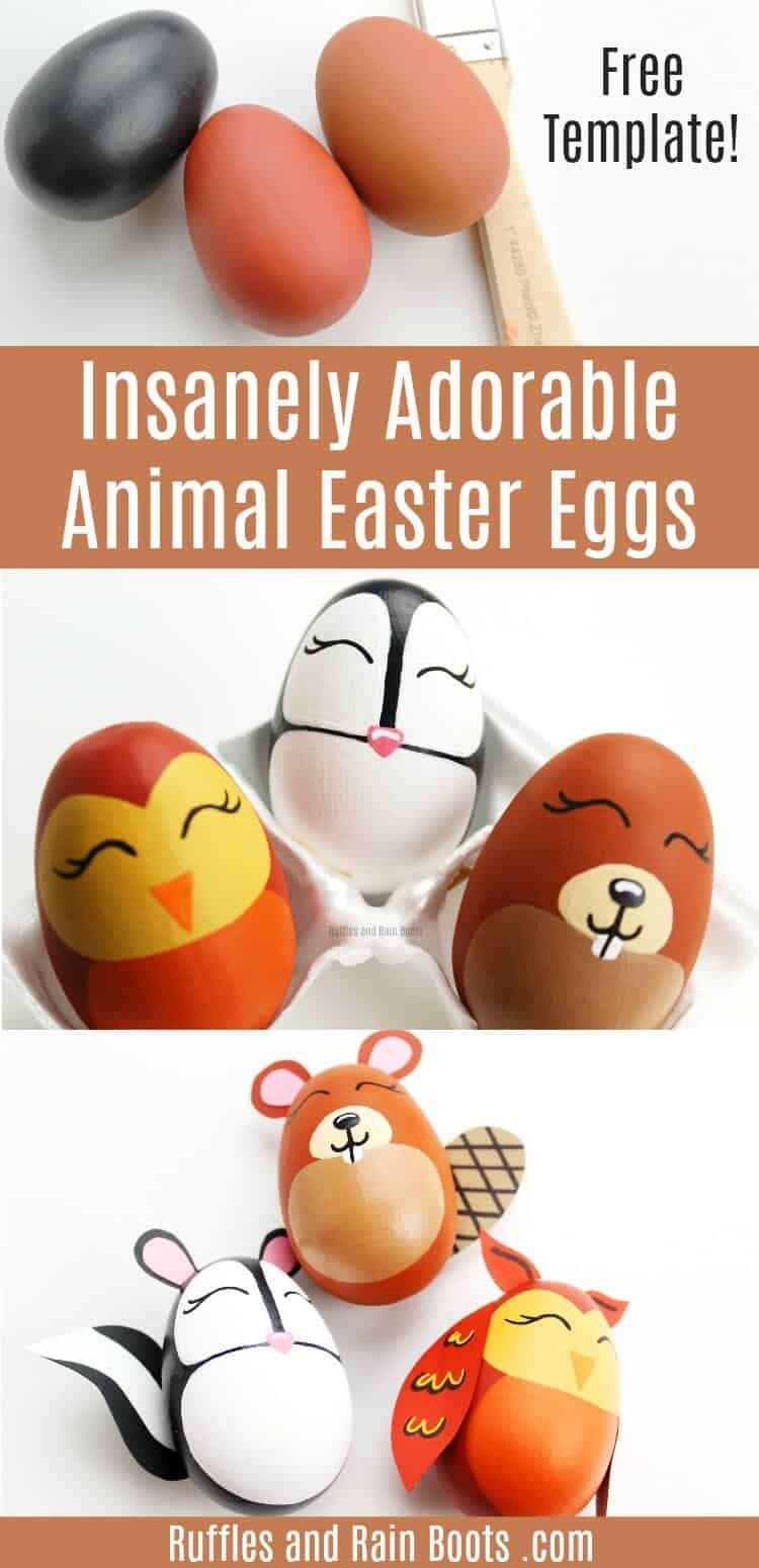 woodland animal Easter eggs on white background