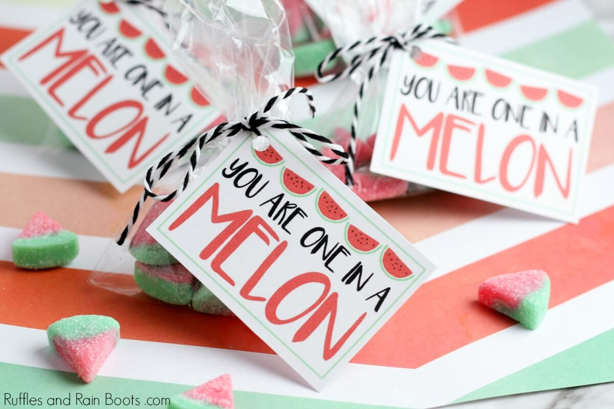 close up of you are one in a melon Watermelon Valentine Printable