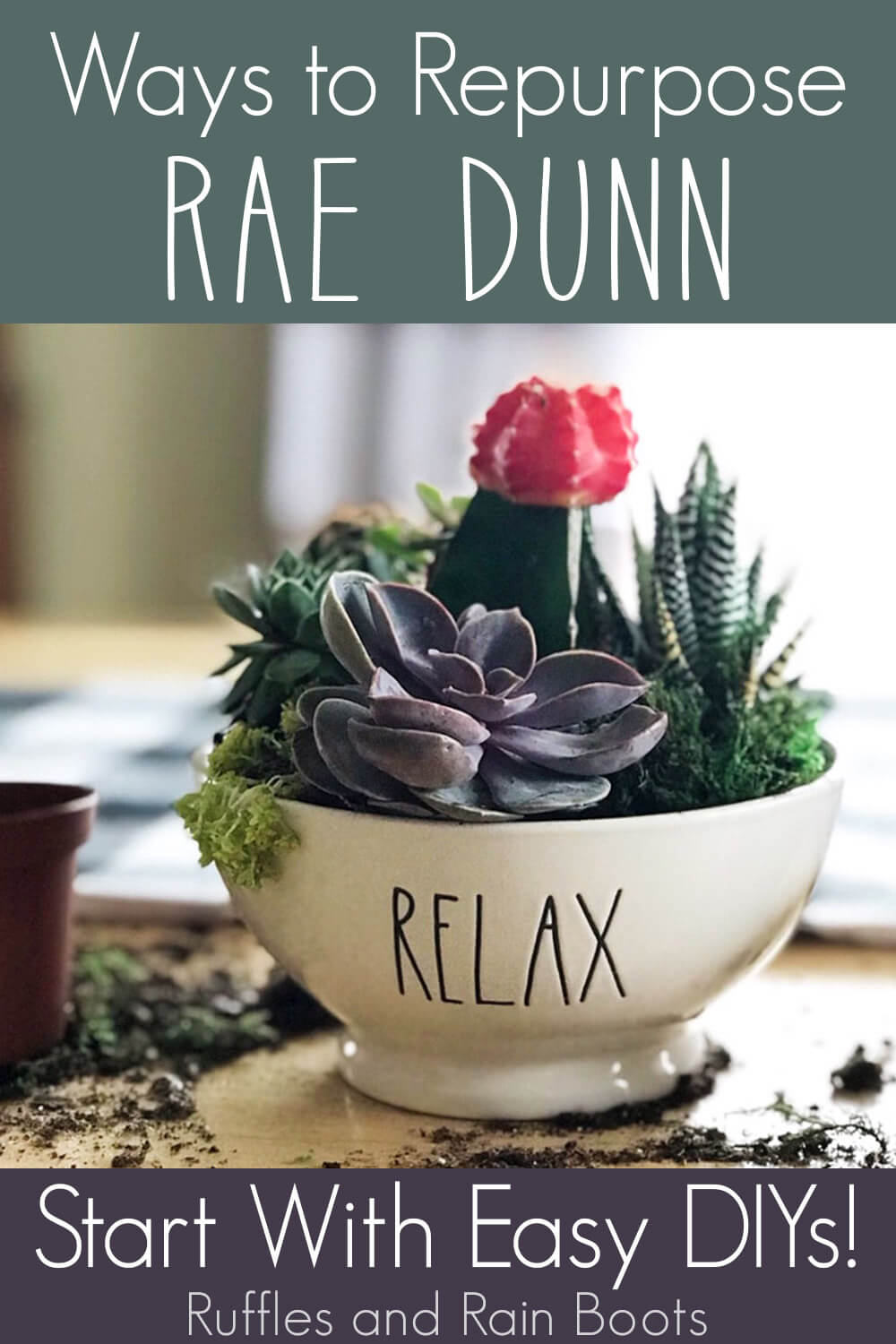 Rae Dunn Repurpose Bowl Planter with text which reads ways to repurpose rae dunn start with easy diys