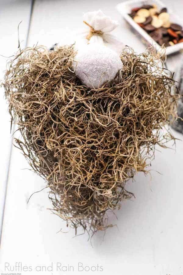 how to make a gnome with natural materials Step 7_ Spanish Moss Gnome Beard DIY