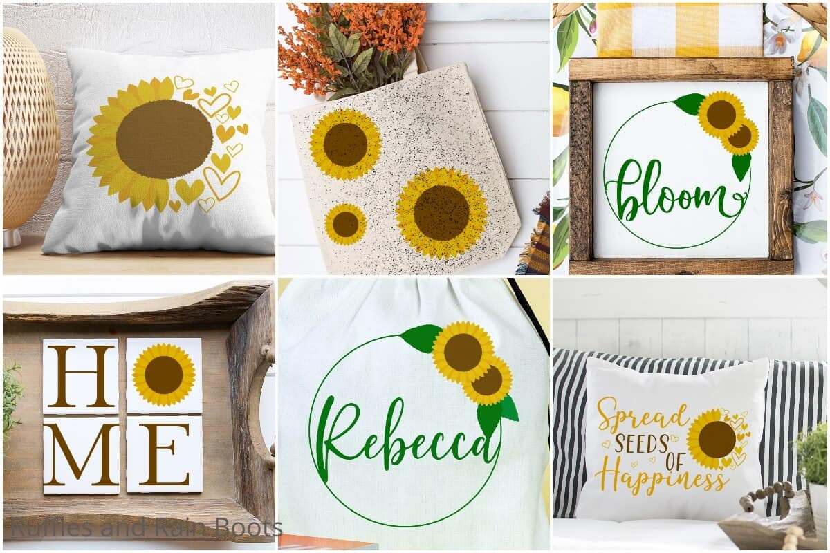 photo collage of sunflower SVG set for cricut or silhouette