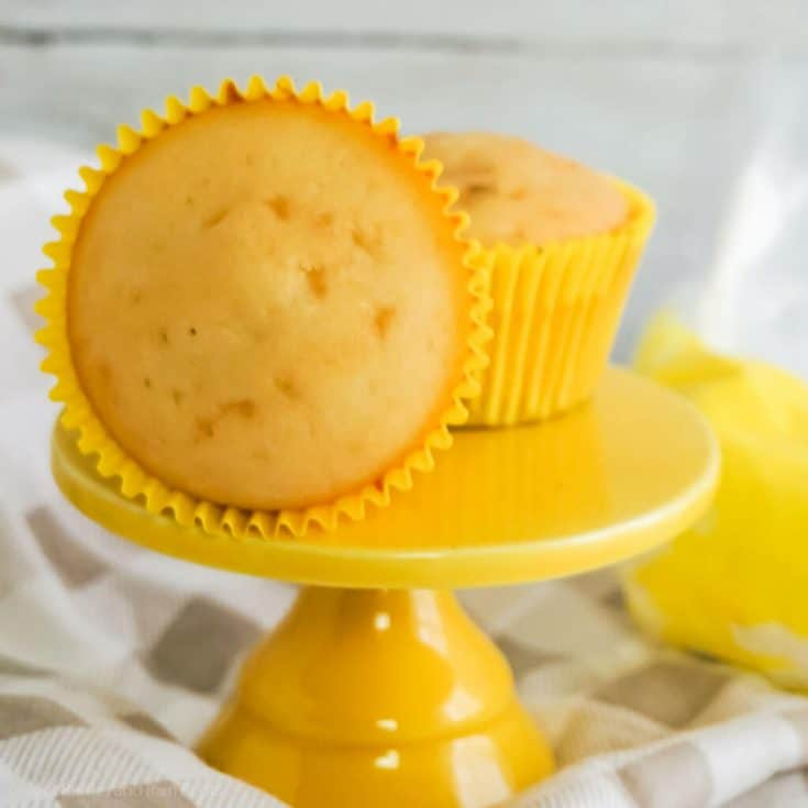 easy small batch cupcakes recipe
