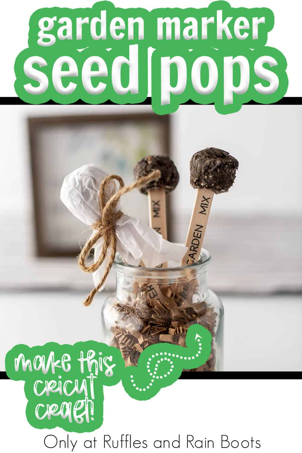 seed bomb and garden marker cricut craft with text which reads garden marker seed pops make this cricut craft