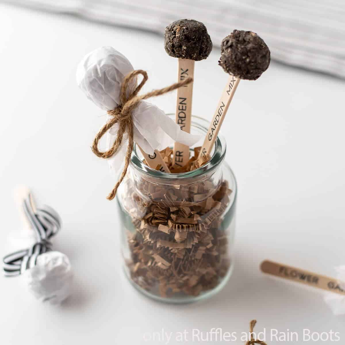 diy seed pops and garden markers cricut craft