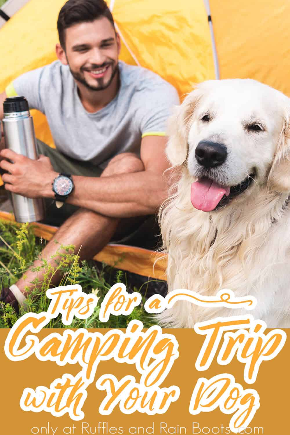 tips for camping out with your dog with text which reads tips for a camping trip with your dog